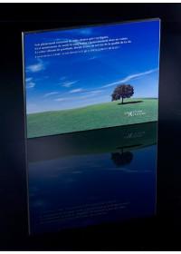 PETIT TABLEAU - SOIS PLEINEMENT CONSCIENT